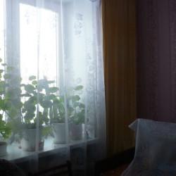 москал квартира